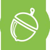 acorns-circle